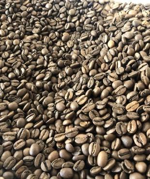 Café Brasil San Rafael